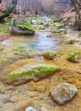 Transparent river Stock Photo