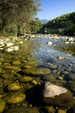 Transparent river bed Royalty Free Stock Photography