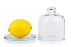 Transparent saucer with lid and lemon Royalty Free Stock Photo