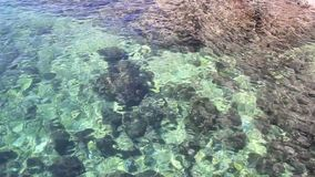 Transparent sea water nature texture, background, pattern and wallpaper. Playing colors in water nature landscape. Clear green blue Adriatic sea dancing with stock video footage