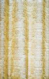 Transparent silk cloth curtain texture Royalty Free Stock Photography