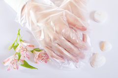 Transparent single use gloves Stock Image