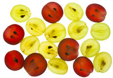 Transparent slices of red yellow grapes Stock Photos