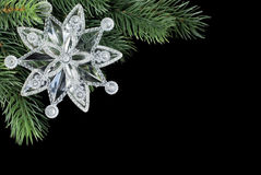 Transparent snowflake on fir branch Stock Image