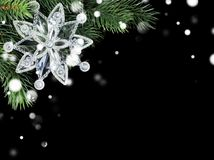 Transparent snowflake on fir branch Royalty Free Stock Images