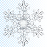 Transparent snowflake. Translucent only in vector file Royalty Free Stock Image