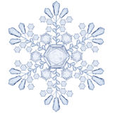 Transparent snowflake. Translucent only in vector file Stock Photography