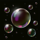 Transparent soap bubble on black background Stock Image