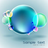 Transparent soap bubble on gray background Stock Image