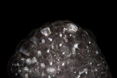 Transparent soap bubbles Royalty Free Stock Photos