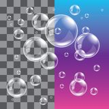 Transparent soap bubbles photo realistic vector Royalty Free Stock Photos