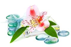 Transparent spa concept with flower Royalty Free Stock Image