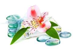 Transparent spa concept met bloem royalty-vrije stock afbeelding