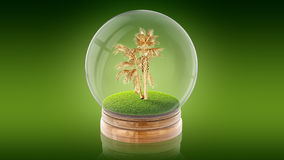 Transparent sphere ball with golden palm inside. 3D rendering. Royalty Free Stock Images