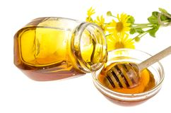 Transparent sweet flower honey in glass form. Studio Photo stock photography