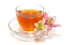 Transparent teacup Royalty Free Stock Image