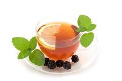 Transparent teacup with tea Stock Photos
