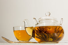 Transparent teapot Royalty Free Stock Photo