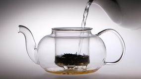 Into transparent teapot with tea leaves is poured boiling water. Into transparent glass teapot with tea leaves is poured boiling water, tableware fog up, studio stock video