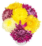 Transparent vase with chrysanthemum and dhalia purple and yellow flowers, isolated, white background Royalty Free Stock Image