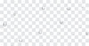 Transparent water drop background vector Stock Photo