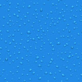 Transparent water drops vector seamless pattern. Background with dew illustration Stock Images