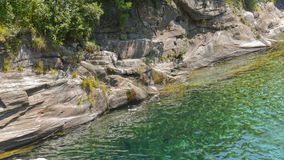 Transparent water green color of the river. In summer in the mountains royalty free stock images