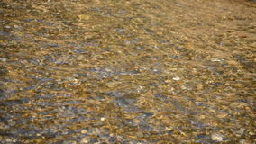 Transparent Water River. This is footage of clear water streaming very fast in a small river near a spring. The water is very transparent stock video footage