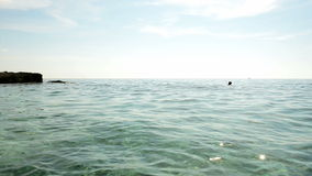 Transparent water at the shore. Summer stock footage