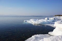 Transparent water winter sea Stock Images