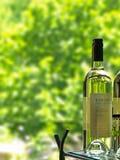 Transparente Glasflasche und grüner Hintergrund Stockfotografie