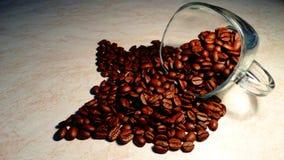 Transparente Schalen- und coffebohnen, Coffe-Espresso Lizenzfreie Stockbilder