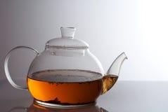 Transparente Teekanne mit Krauttee Lizenzfreie Stockbilder