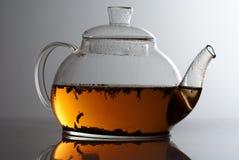 Transparente Teekanne mit Krauttee Stockbild