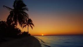 Transparente Wellen des karibischen weißen Sandufers stock video