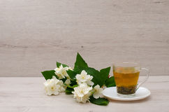 Transparenter Becher mit grünem Tee, ein Zweig des Jasmins auf dem hölzernen Hintergrund Lizenzfreie Stockfotografie