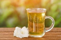 Transparenter Becher Tee mit Jasmin auf einem Hintergrund des Grüns, Sonnenlicht Nahaufnahme Lizenzfreies Stockbild