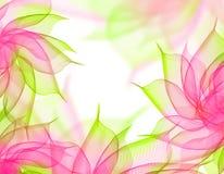 Transparenter Blumenhintergrund Stockbild