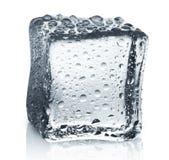 Transparenter Eiswürfel mit Reflexion auf Weiß lokalisierte Hintergrund Lizenzfreies Stockbild
