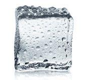 Transparenter Eiswürfel mit Reflexion auf Weiß lokalisierte Hintergrund Lizenzfreie Stockfotos