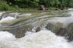 Transparenter und ruhiger kleiner Fluss Plivet Stockbilder