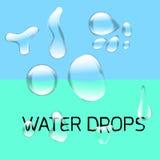 Transparenter Wassertropfen eingestellt auf hellgraues vektor abbildung