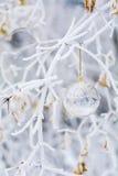 Transparenter Weihnachtsball mit Schneeflocken Stockfotos