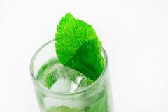 Transparentes Getränk mit Kräutern Lizenzfreies Stockbild