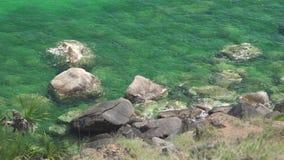 Transparentes Wasser im Türkismeer und felsiges Ufer auf grüner Insel Haarscharfes Wasser und felsige Unterseite in der Seeküste  stock video