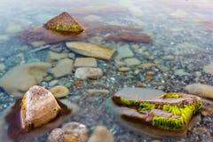 TransparentMeerwasser Stockbild