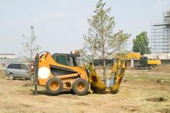 Transplantation of trees Stock Photography