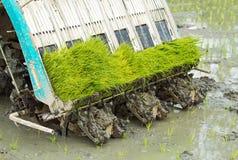 Transplanting rice machine Royalty Free Stock Images