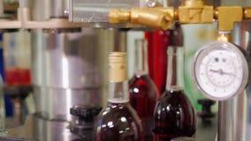 Transportör med flaskor av rött vin Flaskorna stängs med proppar stock video