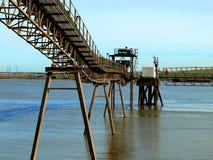 Transportör på floden Fotografering för Bildbyråer